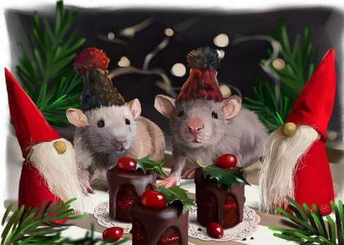 Сценарий домашнего праздника в год Крысы